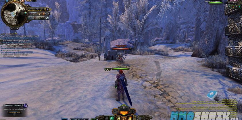 neverwinter_mmoshnik3