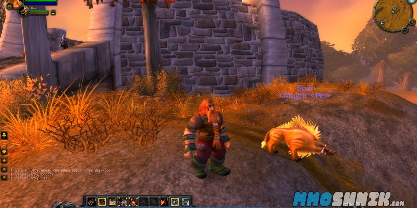world_of_warcraft_mmoshnik4